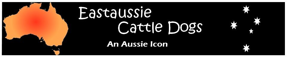 Eastaussie Australian Cattle Dogs